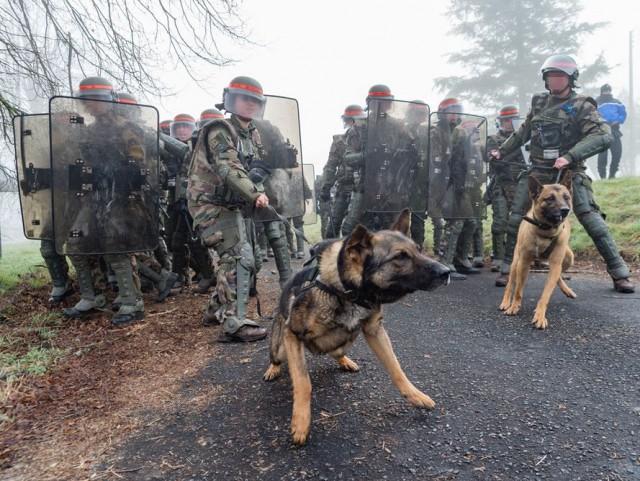 Les équipes du 132e BCAT de l'armée de Terre lors d'un exercice de contrôle de foules au CENZUB (Crédit photo: 132 BCAT)