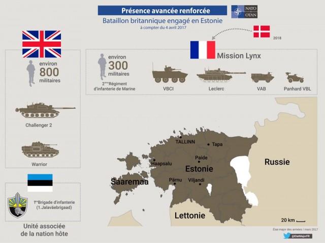 Le dispositif français de la mission Lynx (Crédit: ministère de la Défense)