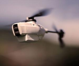 Skeeter devrait supplanter le Black Hornet Nano en service dans l'Armée britannique