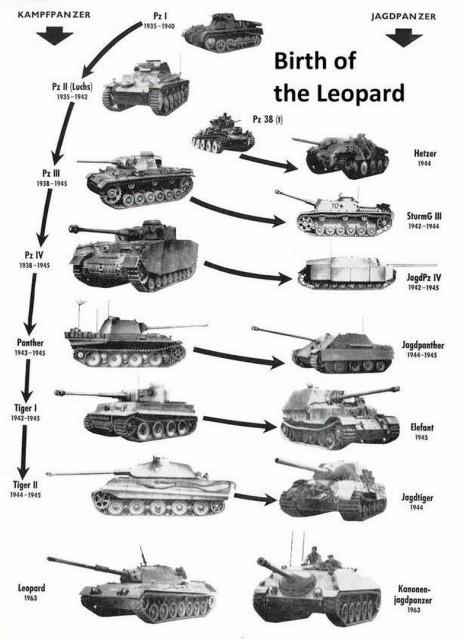 """L'""""arbre généalogique"""" du Léopard"""